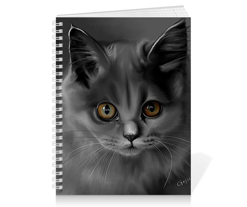 цена Printio Кошки. магия красоты онлайн в 2017 году