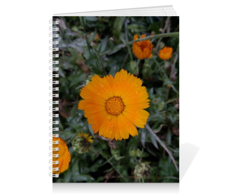 Тетрадь на пружине Printio Летние цветы