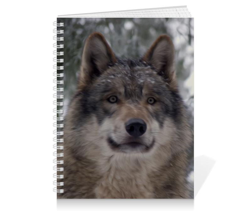 Тетрадь на пружине Printio Волк в лесу чехол для ноутбука 14 printio волк в лесу