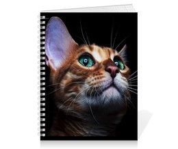 """Тетрадь на пружине """"КОШКИ. МАГИЯ КРАСОТЫ"""" - кошка, стиль, глаза, красота, яркость"""