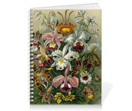 """Тетрадь на пружине """"Орхидеи (Orchideae, Ernst Haeckel)"""" - картина, орхидея, день матери, красота форм в природе, эрнст геккель"""