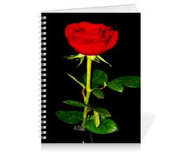 """Тетрадь на пружине """"Роза на черном"""" - цветы, черный, красный, роза"""
