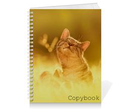 """Тетрадь на пружине """"Кот и солнце"""" - кот, кошка, животные, солнце, коты"""