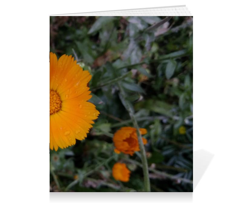 Тетрадь на скрепке Printio Летние цветы