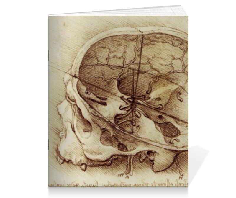 Тетрадь на скрепке Printio Анатомический череп тетрадь на скрепке printio медведь