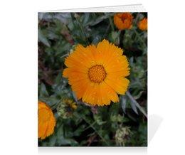 "Тетрадь на скрепке ""Летние цветы"" - лето, цветы, обнимашки, тепло, remember"