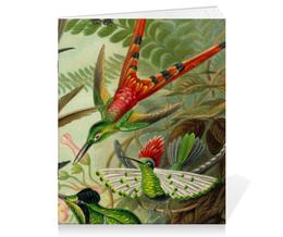 """Тетрадь на скрепке """"Колибри (Trochilidae, Ernst Haeckel)"""" - птицы, картина, колибри, день матери, эрнст геккель"""