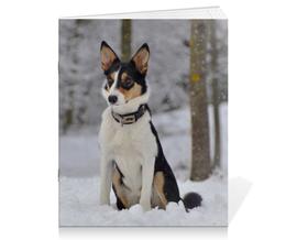 "Тетрадь на скрепке ""Бордер-колли"" - собака, колли, бордер, снег, бордер-колли"