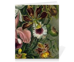 """Тетрадь на скрепке """"Орхидеи (Orchideae, Ernst Haeckel)"""" - картина, орхидея, день матери, красота форм в природе, эрнст геккель"""