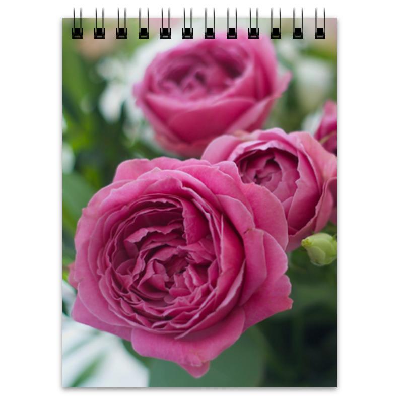 Блокнот Printio Розовые розы белые розы розовые слоны