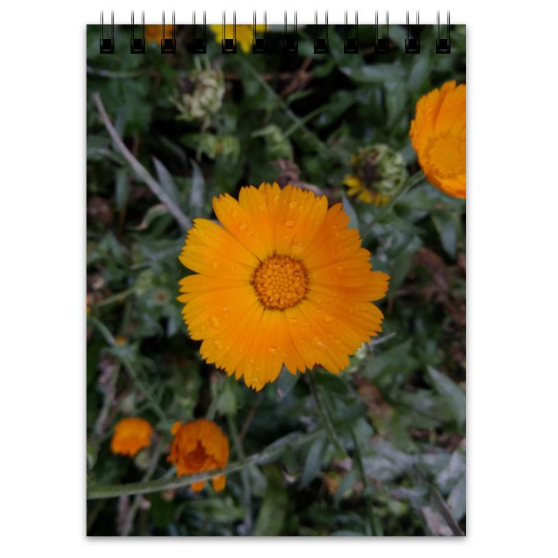Блокнот Printio Летние цветы блокнот printio блокнот летние цветы
