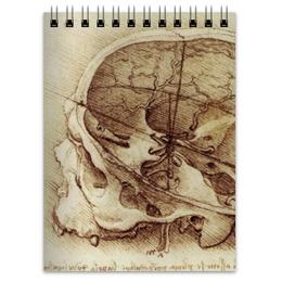 """Блокнот """"Анатомический череп"""" - череп, леонардо, анатомия, анатомический череп"""