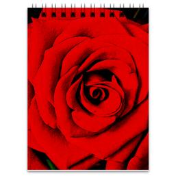 "Блокнот ""Красная роза "" - цветы, роза, красная роза"