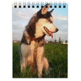 """Блокнот """"Сибирский Хаски"""" - щенок, хаски, husky, сибирский хаски"""