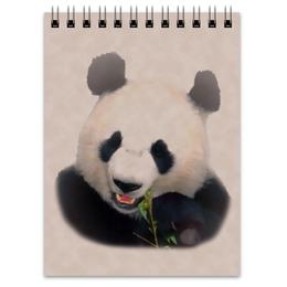 "Блокнот ""Панда"" - медведь, черно-белый, китай, банда, бамбуковый"