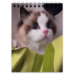 """Блокнот """"Блокнот Милые котики"""" - 'котики'"""