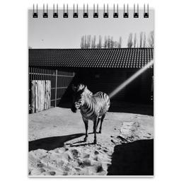 "Блокнот ""зебра"" - животные, зебра, черно-белое, zebra"