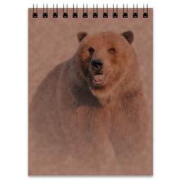 """Блокнот """"Медведь"""" - медведь, дикий, рисунок, коричневый, бурый"""