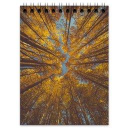 """Блокнот """"Осень"""" - осень, лес, небо, туманы, что такое осень"""