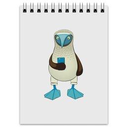"""Блокнот """"Blue-footed booby"""" - iphone, птицы, смартфон, голубоногая олуша"""