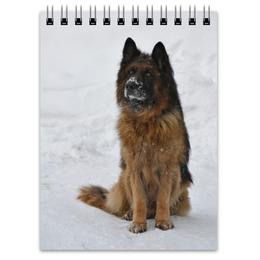 """Блокнот """"Овчарка Платон"""" - зима, собака, овчарка, овчар-команда"""