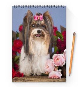 """Блокнот на пружине А4 """"Собака"""" - собака, фотография, животное"""