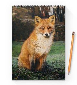 """Блокнот на пружине А4 """"Лиса """" - животные, лиса, рыжая лиса, хитрая лиса, красивая лиса"""