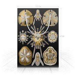 """Пакет 15.5х22х5cм """"бумажный, черный с золотом"""" - арт, новый год, мужчине, начальнику, эрнст геккель"""