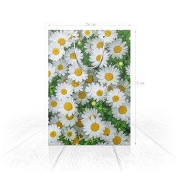 """Пакет 25x35x8cм """"Ромашковое поле."""" - цветок, ромашка, природа, поле, флора"""