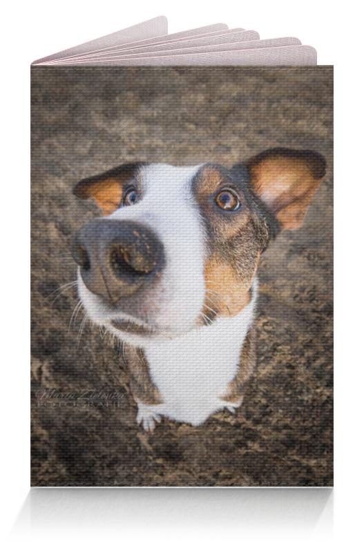 Обложка для паспорта Printio Собака обложка для паспорта printio собака dog