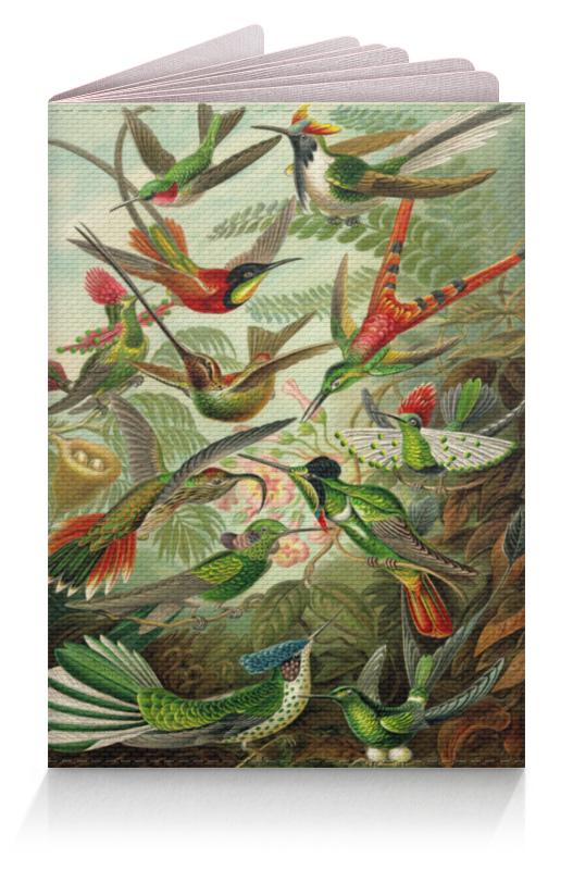 Обложка для паспорта Printio Колибри (trochilidae, ernst haeckel) цена
