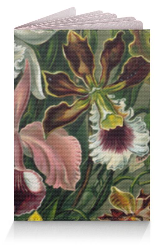 Обложка для паспорта Printio Орхидеи (orchideae, ernst haeckel) цена