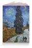 """Обложка для паспорта """"Дорога с кипарисом и звездой (Винсент Ван Гог)"""" - картина, ван гог, живопись"""