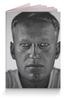 """Обложка для паспорта """"Навальный 2018"""" - навальный, выборы, 2018, navalny, my-navalny"""