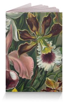 """Обложка для паспорта """"Орхидеи (Orchideae, Ernst Haeckel)"""" - картина, орхидея, эрнст геккель, 14фев, 8мар"""