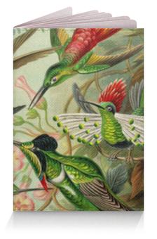 """Обложка для паспорта """"Колибри (Trochilidae, Ernst Haeckel)"""" - картина, день матери, колибри, птицы, эрнст геккель"""