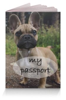 """Обложка для паспорта """"Французский бульдог"""" - собака, французский бульдог, француз, красивая обложка на паспорт, обложка с собакой"""