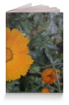 """Обложка для паспорта """"Летние цветы"""" - лето, цветы, summer, обнимашки, memory"""