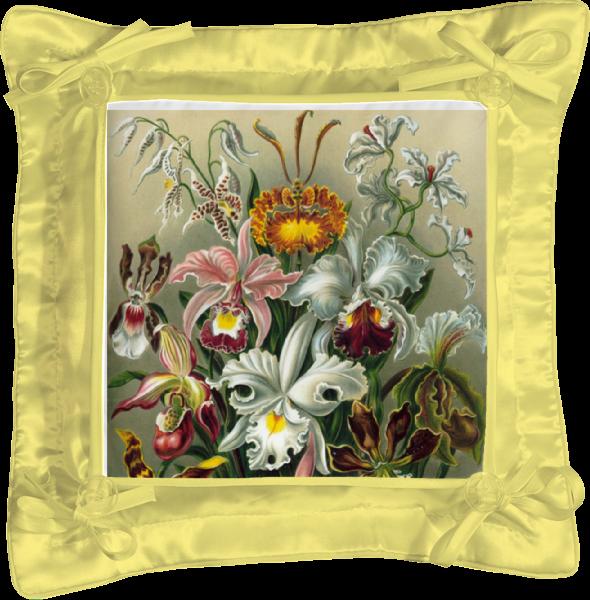 Подушка простая Printio Орхидеи (orchideae, ernst haeckel) самые дешевые орхидеи в москве