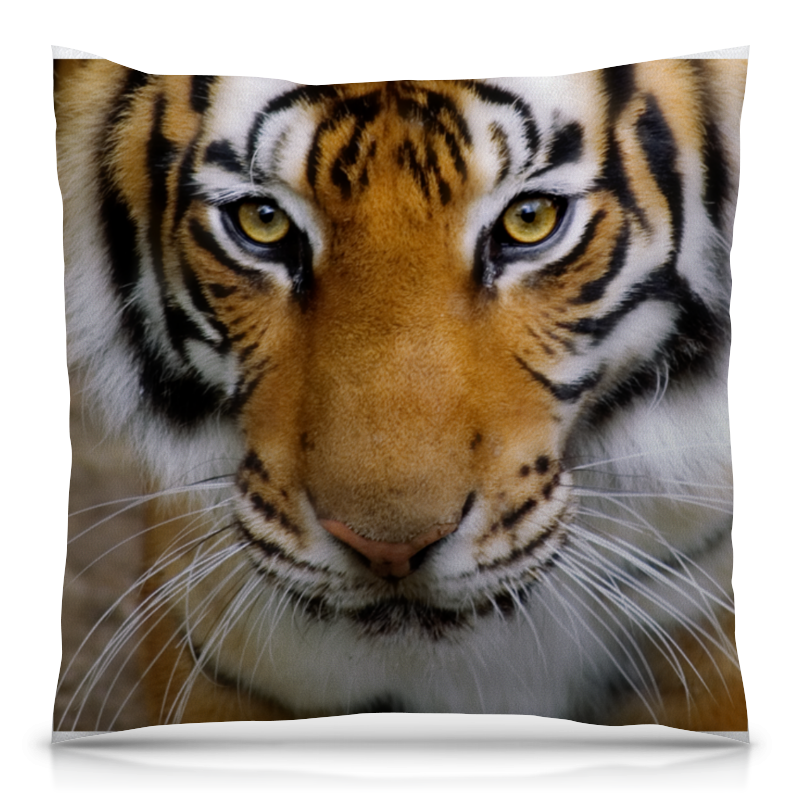 Подушка 40х40 с полной запечаткой Printio Амурский тигр футболка с полной запечаткой мужская printio амурский тигр
