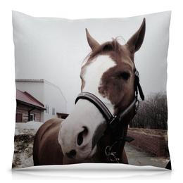 """Подушка 40х40 с полной запечаткой """"Коняшик"""" - лошадь, конный спорт"""
