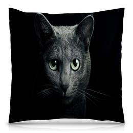 """Подушка 40х40 с полной запечаткой """"Серый кот"""" - кот, кошка, животные, котенок, коты"""