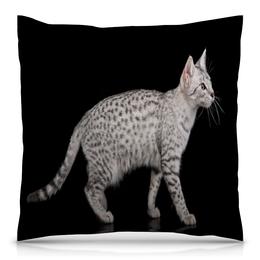 """Подушка 40х40 с полной запечаткой """"Котик"""" - кот, кошка, животные, котенок, коты"""