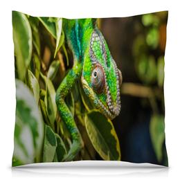"""Подушка 40х40 с полной запечаткой """"Хамелеон на дереве"""" - животные, зеленый, природа, ящерица, хамелеон"""