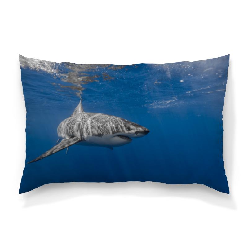 Подушка 60х40 с полной запечаткой Printio Акула серова м клад белой акулы