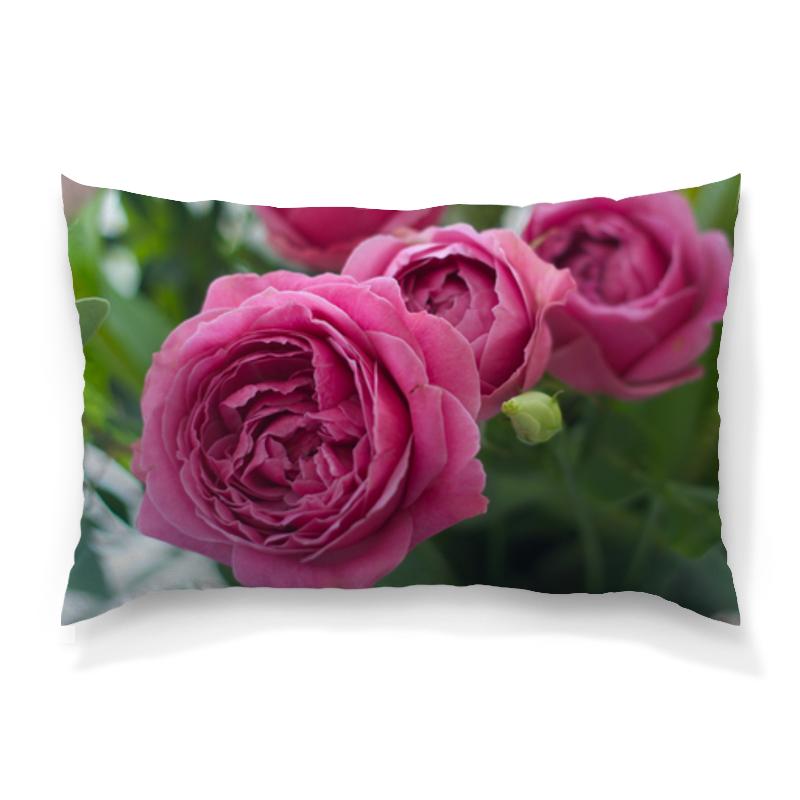 Printio Розовые розы цена и фото