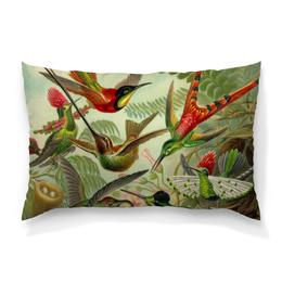 "Подушка 60х40 с полной запечаткой ""Колибри (Trochilidae, Ernst Haeckel)"" - 8 марта, птицы, картина, бабушка, эрнст геккель"