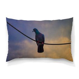 """Подушка 60х40 с полной запечаткой """"Голубь"""" - голубь, провода, небо, dove, птица"""
