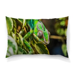 """Подушка 60х40 с полной запечаткой """"Хамелеон на дереве"""" - животные, зеленый, природа, ящерица, хамелеон"""