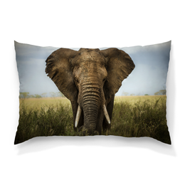 "Подушка 60х40 с полной запечаткой ""Elephant"" - elephant, слон, африка, саванна, ivory"